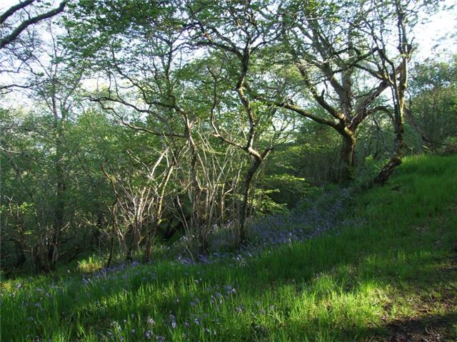Shian Wildlife Walk Image